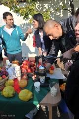 Sarbatoarea Recoltei la Scoala Step by Step Bucuresti